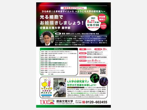 フライヤー*cl.徳島文理大学 薬学部